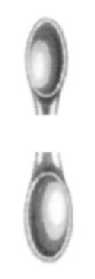 HWK 047-03, Doppellöffel