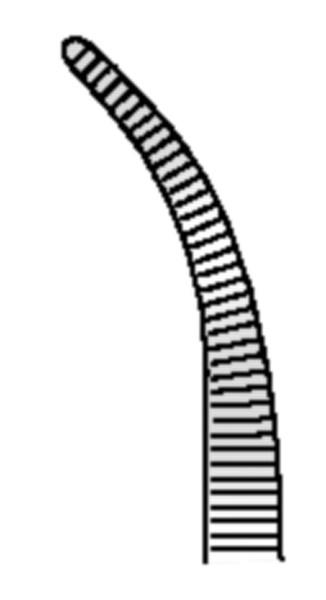 HSE 017-12, Arterienklemme