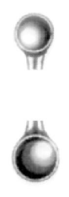 HWK 042-03, Doppellöffel